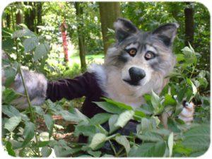 wolf-04