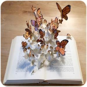 Boek met Vlinders_compressed